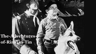 The-Adventures-of-Rin-Tin-Tin